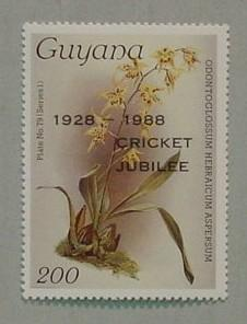 Postage stamp - 1928-1988 Guyana Cricket Jubilee