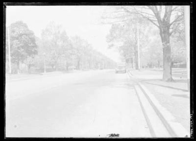 Glass negative, image of truck on empty tree-lined road