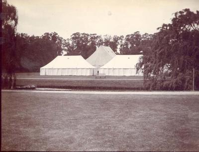 Photograph from Frank Laver's photograph album, Australian cricket tour to England - 1899