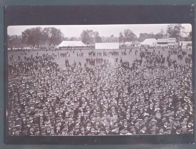 Photograph from Frank Laver's photograph album, cricket crowd circa 1909