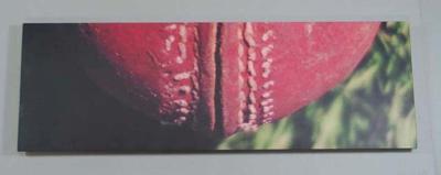 """Panel, """"Ball II"""" by Kenny Lamont Bunny"""