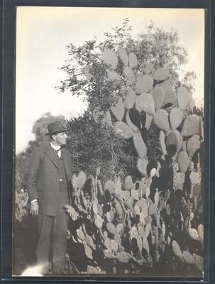 Photograph from Frank Laver's photograph album, travel scenes c1914