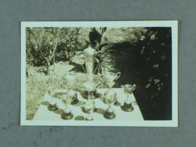 Photograph of Shirley Strickland's athletic trophies, c1930s-40s; Photography; 2003.3903.16