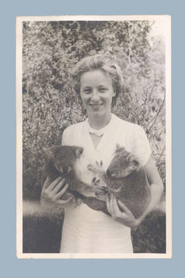 Photograph of Shirley Strickland with two koalas, c1949