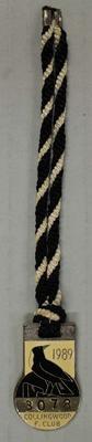 Membership medallion, Collingwood Football Club 1989; Trophies and awards; 1990.2241.18