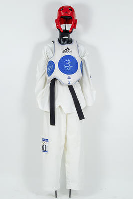 Tae Kwon Do head guard worn by Lauren Burns, Sydney Olympic Games, 2000