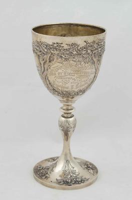 Trophy, Junior Challenge Cup 1876