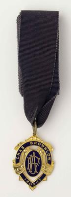 Brownlow Medal won by Shane Crawford, 1999