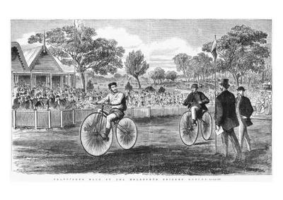 VELOCIPEDE RACE ON THE MELBOURNE CRICKET GROUND - framed and mounted reproduction of a lithograph  by Samuel Calvert (1828-1913)