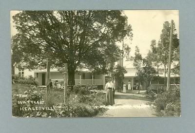 Postcard, image of The Wattles at Healesville