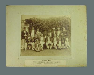 Photograph of Victorian cricket team, 1894