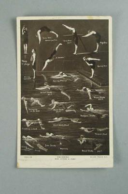 Postcard, image of various swimming and diving postures