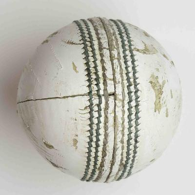 Cricket ball used during India v South Africa match, 2015 Cricket World Cup