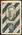 1933 Allen's Australian Football Eric Little trade card