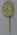 Olympic Torch & Rings Lapel Pin