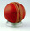 Used red leather cricket ball - Australia v Pakistan, 12-16 January 1990