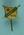"Stick pin, ""D.R.C. 1919."""