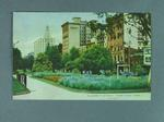 "Postcard, ""Elizabeth Street from Hyde Park, Sydney"""