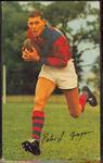 1965 Mobil Footy Photos Peter Grogan trade card