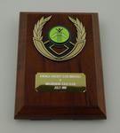 Plaque, Knowle Cricket Club (Bristol) v Melbourne XXIX Club - July 1997