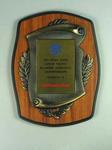 Shield - 1991 Hong Kong Junior Pacific Alliance Gymnastic Championships - presented to Australia Team