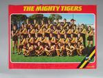 Photograph of Richmond Football Club, 1984
