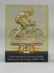 Trophy - Bicycle Victoria AGM 1992 - presented to Brian Dixon