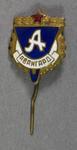 Russian shield-shaped lapel pin
