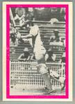 1974 Sunicrust Cricket - Australia v England, Greg Chappell trade card