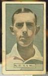 1936-37 Allen's Cricketers Edward White trade card