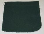 Green blazer pocket, date unknown