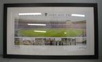 Photographic montage, 'Geelong Cats - 2009 AFL Premiers'
