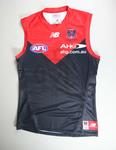 Melbourne Football Club jumper, 2014 season