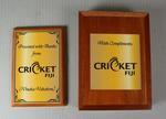 Cricket Fiji plaque presented to the Melbourne Cricket Club, 2013