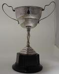 Trophy for pommelled horse champion, awarded to Stan Davies by Australian Gymnastics Union, 1950