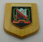 Shield presented to MCC XXIX by Ynysygerwn Cricket Club (Wales) 1991